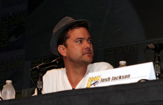 Fringe Cast Says Goodbye at Comic Con   TV Fanatic eR97stP2