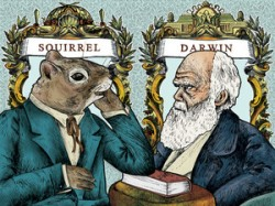fringe controversial science topicsFringe Review  Squirrel or The Origin of a Species tWqKUG0K